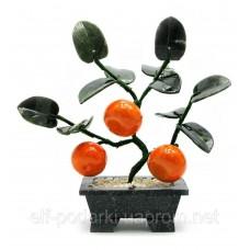 Дерево мандарин (3 плоду)(18х19х7 см) ЗП-18594